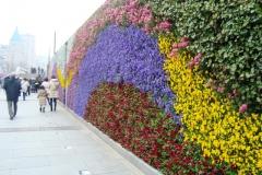 Shangai Bund