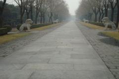 Via sacra verso tombe Ming
